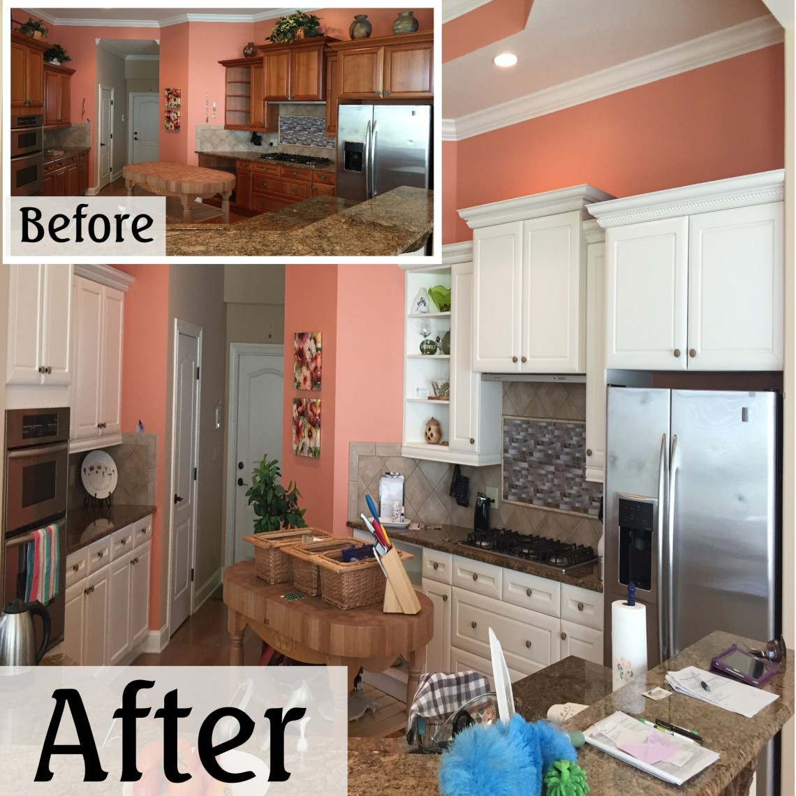 Kitchen Doors To Paint: The Signature Painting